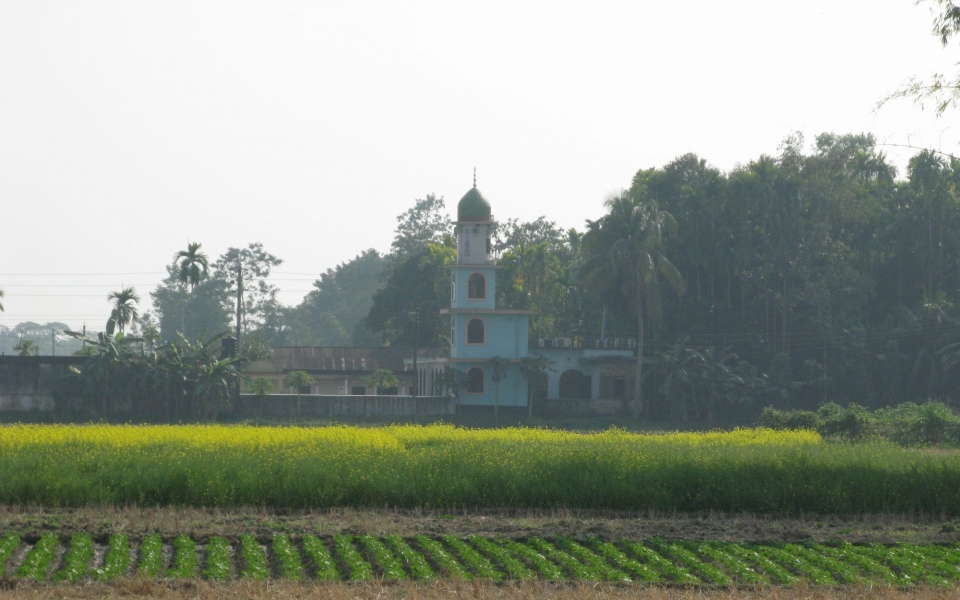 Mosque and mustard fields. Sylhet, Bangladesh, February 2020